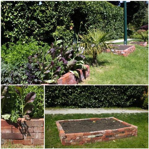 Turning Lawn into a Vegetable Garden with Raised Beds - Garden Therapy