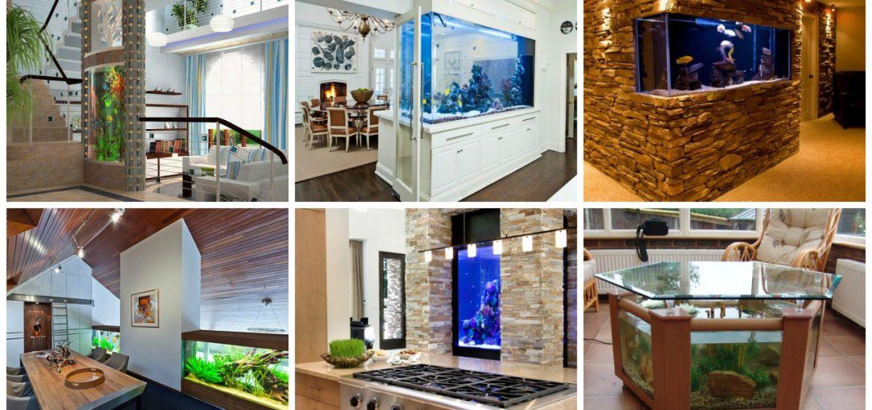 Aquarium Decoration At Home Types Of Wood