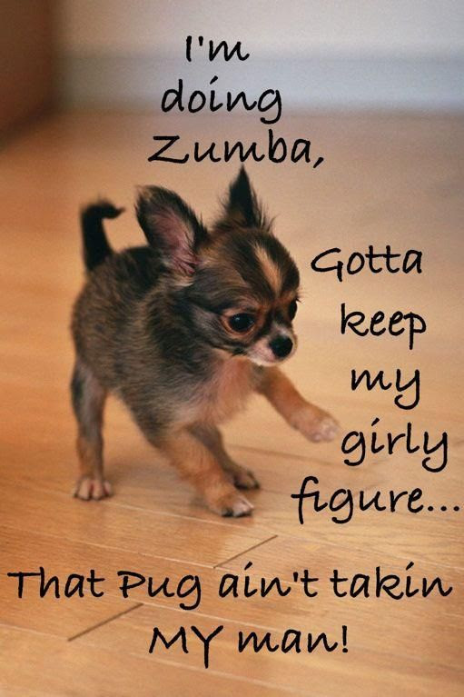Zumba Funny Quotes. QuotesGram