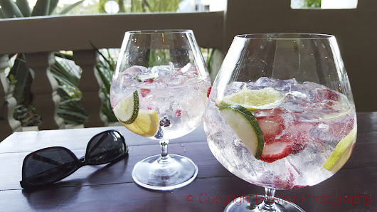 A quick 101 on making gin-and-tonic | BKWine Magazine |