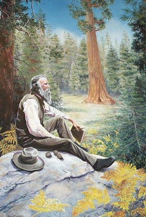 John Muir painting by Colleen Veyna