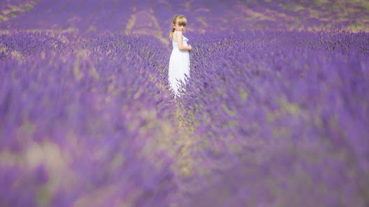 Princess Of Purple - ViewBug.com
