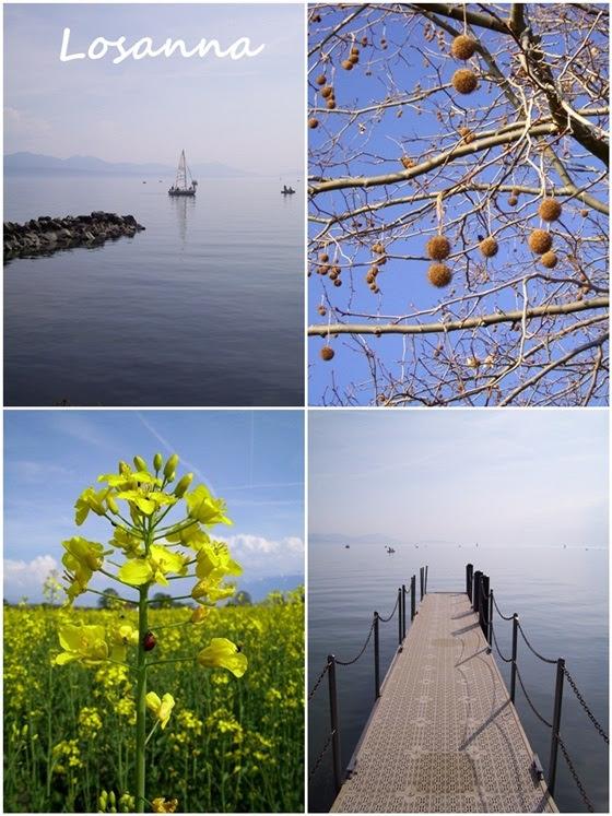 Losanna - Il lago