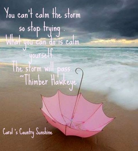 After The Storm Quotes Daily Inspiration Quotes