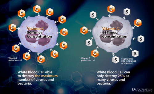 White Blood Cells and Insulin Pumps - El Paso Chiropractor