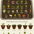 A Vegetable Growing Cheat Sheet {Visual} - Best Infographics