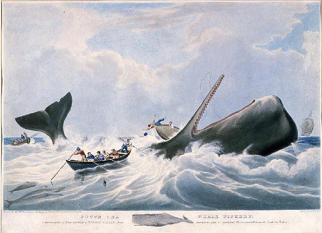 http://19thcenturyrealism.com/wp-content/uploads/2013/01/Whaling-Huggins.jpg