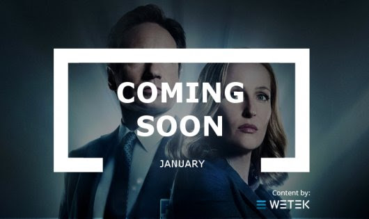 Coming Soon: January | WeTek Blog