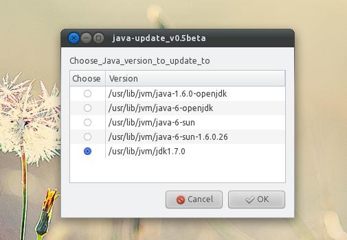 Wählen Sie die Java-Version, die Sie installieren und als Standard festlegen möchten