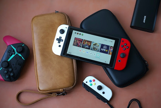 Detailed Comparison: Nintendo Switch Leather Pouch vs. Hardshell Carrying Case