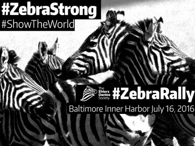 #ZebraStrong! The Ehlers-Danlos Society Zebra Rally in Baltimore's Inner Harbor - EDSAwareness.com