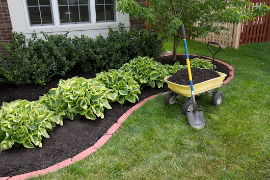 Mulch Selection Info – Choosing Mulch For Gardens