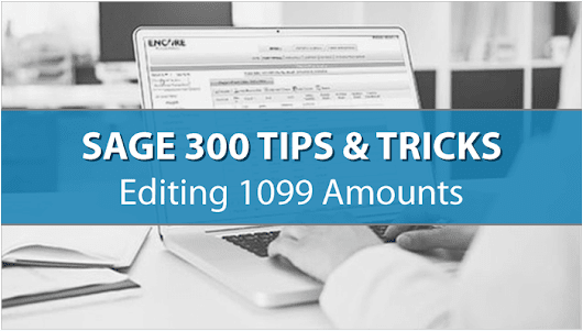 Sage 300 (Accpac) Tip: How to Change 1099 Vendor Amounts