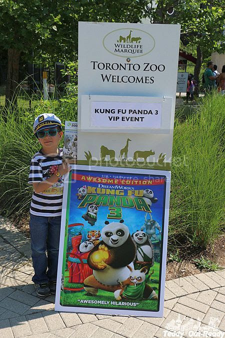 King Fu Panda 3