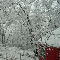 yurt snow Feb 2007