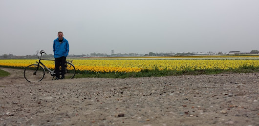 Biking around Keukenof Gardens during tulip season