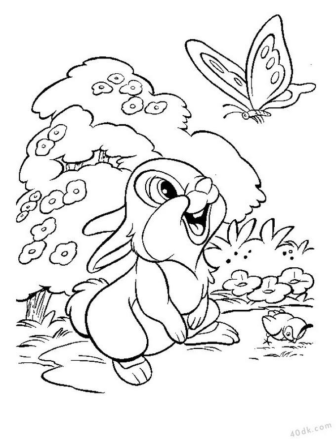 40dkcom Tavşan Boyama Sayfası 597 40dk Eğitim Bilim