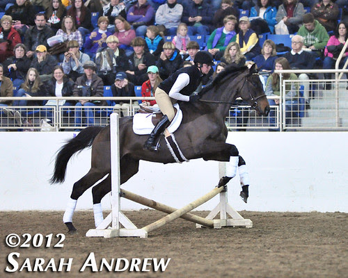 Retired Racehorse Training Project's Trainer Challenge Finale in Harrisburg, PA