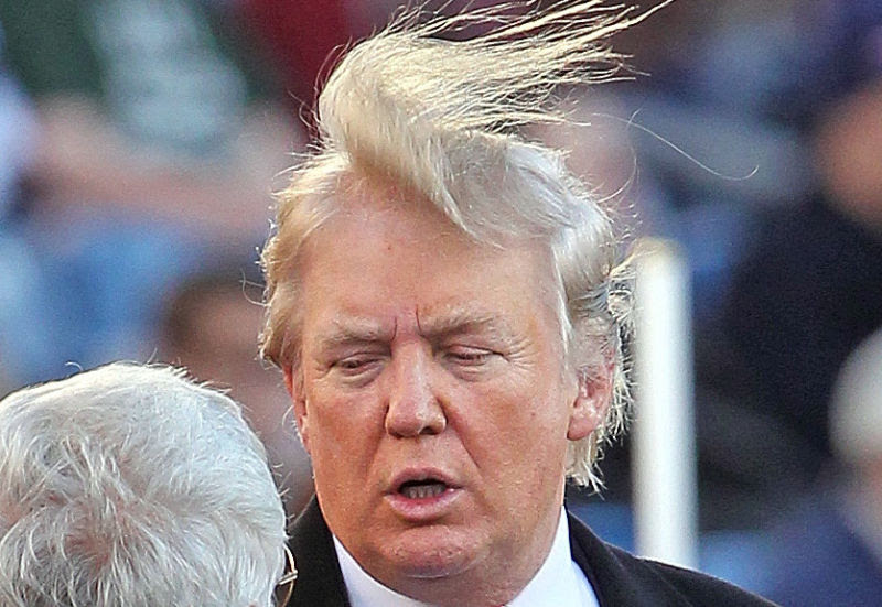 Image result for trump hair