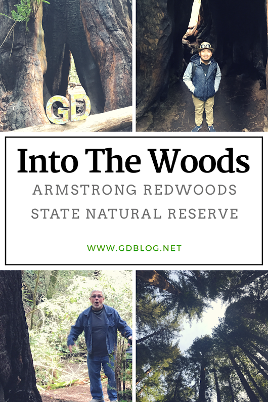 Into The Woods - Armstrong Redwoods State Natural Reserve | G&D Blog | Gay Lifestyle Blog