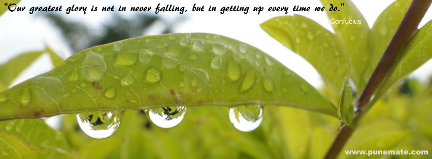 Quotes About Drops Of Water 69 Quotes