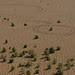 israel2012-desert-23