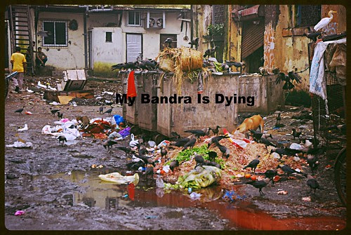 My Bandra Is Dying by firoze shakir photographerno1