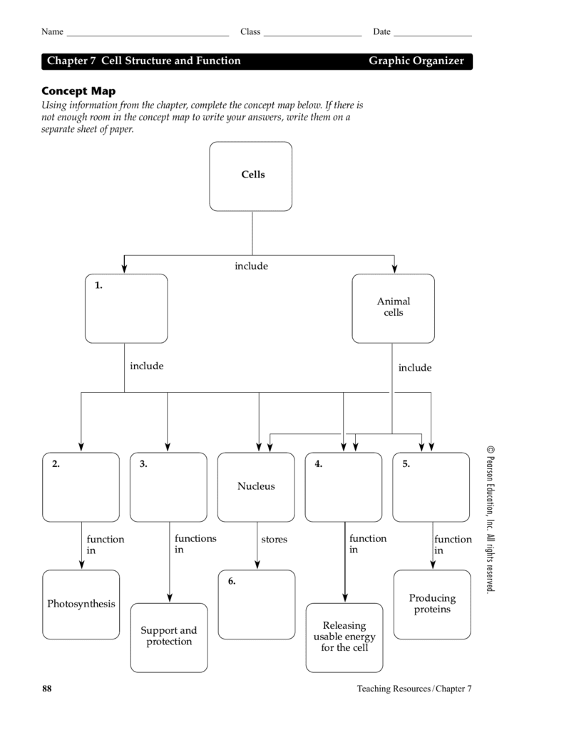 31 Cell Concept Map Worksheet Answer Key - Notutahituq ...