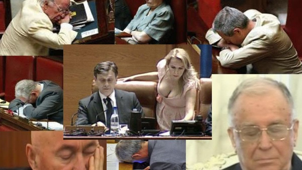 Image result for parlamentari