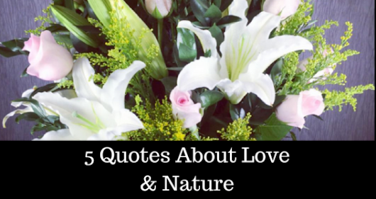 5 Quotes About Love and Nature - Flowers of the Field Las Vegas