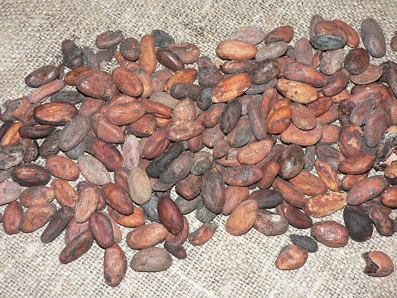 File:Cocoa beans P1410151.JPG