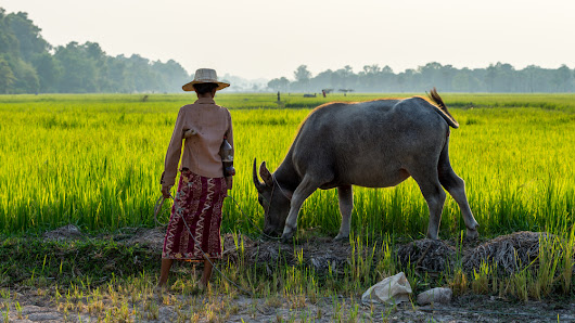 13 Reasons Why You Should Visit Cambodia at Least Once in Your Lifetime