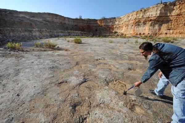 Scoperta a Bari cava con orme di dinosauri