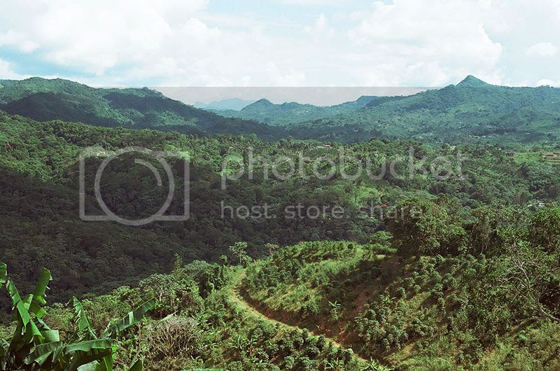 photo Mountains_zpsl3t6wppm.jpg