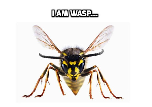 Identifying And Controlling WASPs