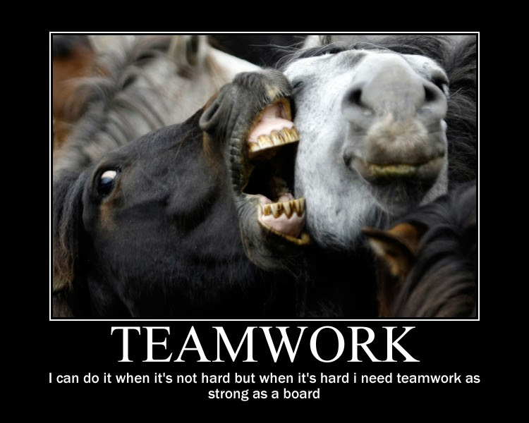 Teamwork, I Can Do It When It's Not Hard But When It's ...