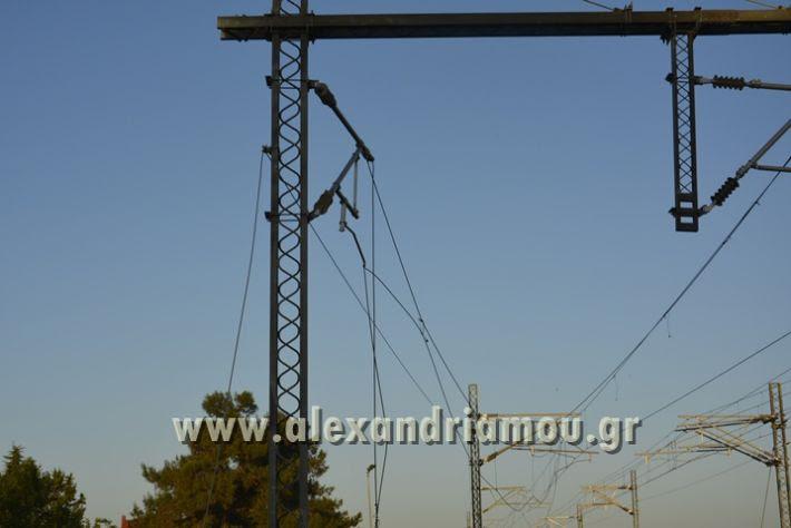 alexandriamou_treno_adentro2028