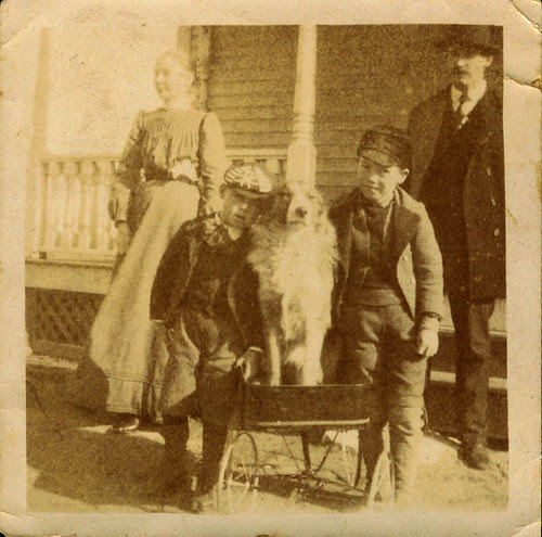 Mom and Dad, two boys and a dog in a wagon