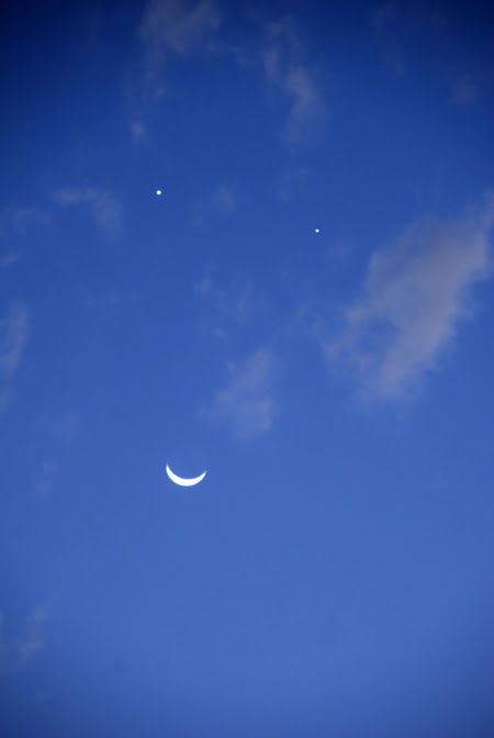 moon smile© by Haalo