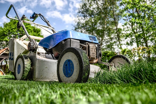Preparing your lawn for fall in South Florida