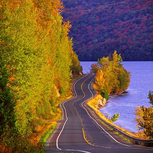 The 15 Best American Road Trips to See Fall Leaves | Architectural Digest