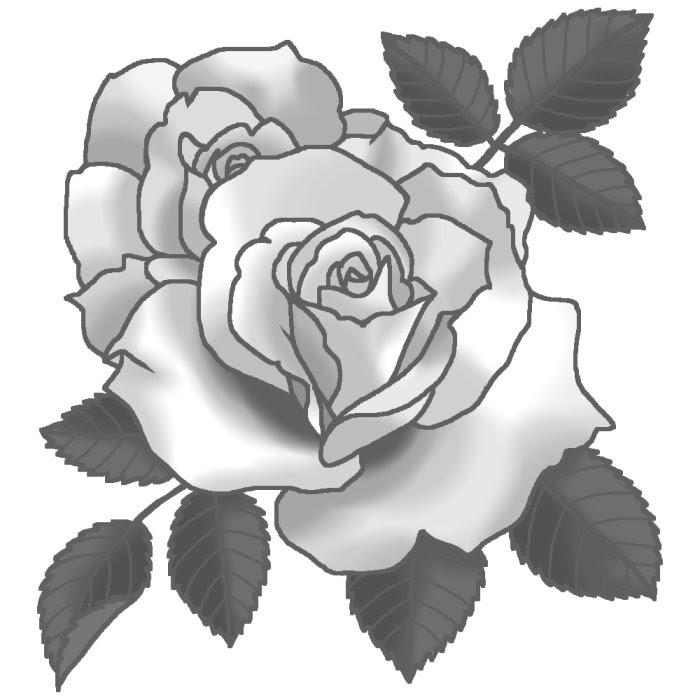 マーガレットメリルモノクロバラの花1ばらのイラスト花のイラスト