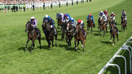 Dante and Derby runners face off once again for royal title | Horse Racing News | Racing Post