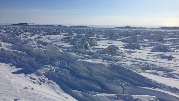 With more than 70 per cent of all Canadian coasts located in the North, this expansive area is one of the regions in need of close attention in light of climate change.