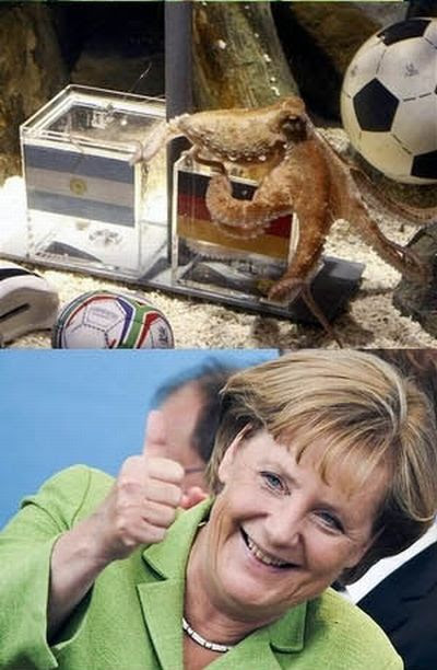 The Sad End of Paul the Octopus (4 pics)