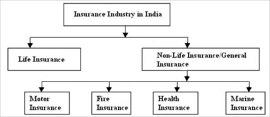 An Introduction - Indian General Non-Life Insurance ...