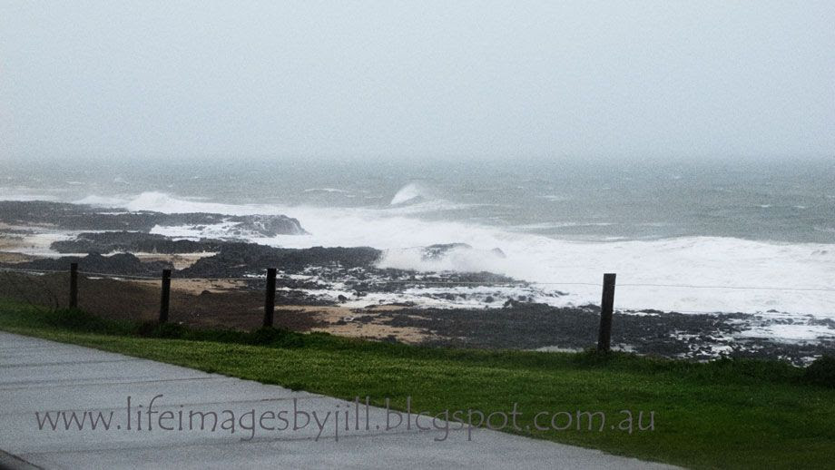 9 July 2014 photo Bunbury-backbeach-IMG_3090_zpsb7364a2c.jpg