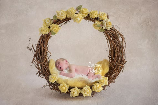 Digital Backdrop Background Composite floral basket