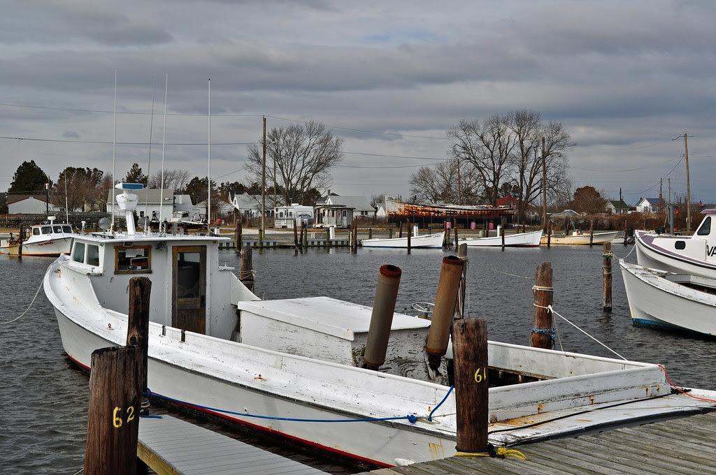 Chesapeake Bay Deadrise
