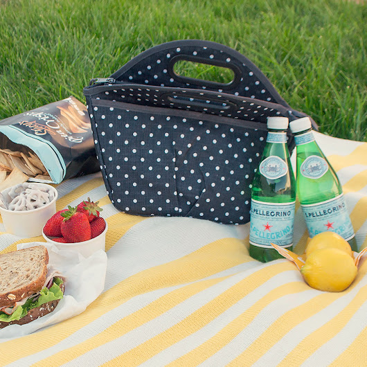 Packit Picnic Lunch Bags